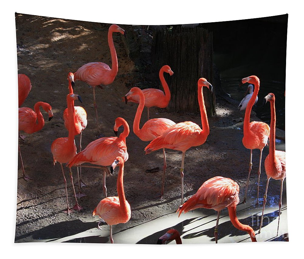 Pink Flamingos Tapestry featuring the greeting card Pink Flamingos by Carol Groenen