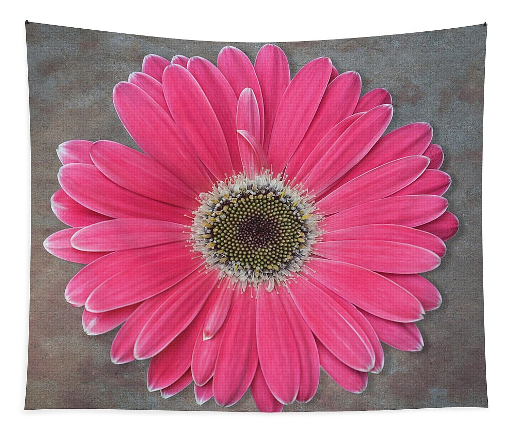 Flower Tapestry featuring the photograph Pink Flower by Patti Deters