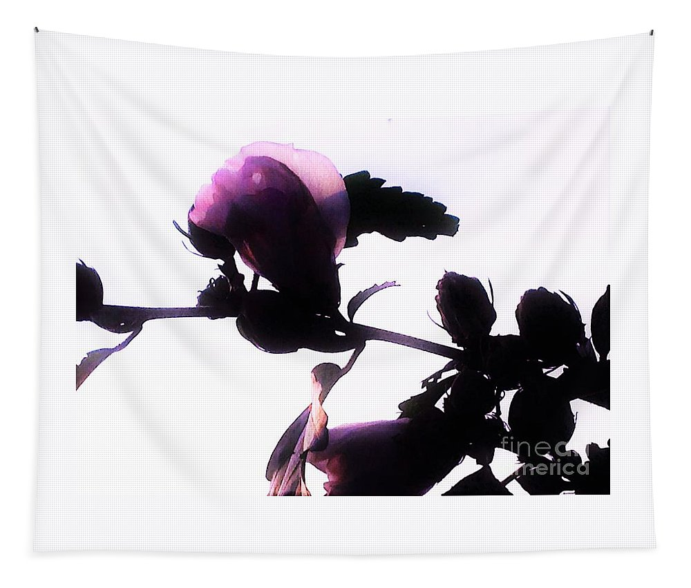 Rose-of-sharon Tapestry featuring the photograph Pink Flowers In Empty Space by Debra Lynch