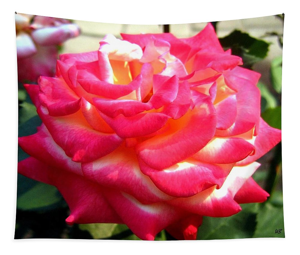 Rose Tapestry featuring the photograph Pink Perfection by Will Borden