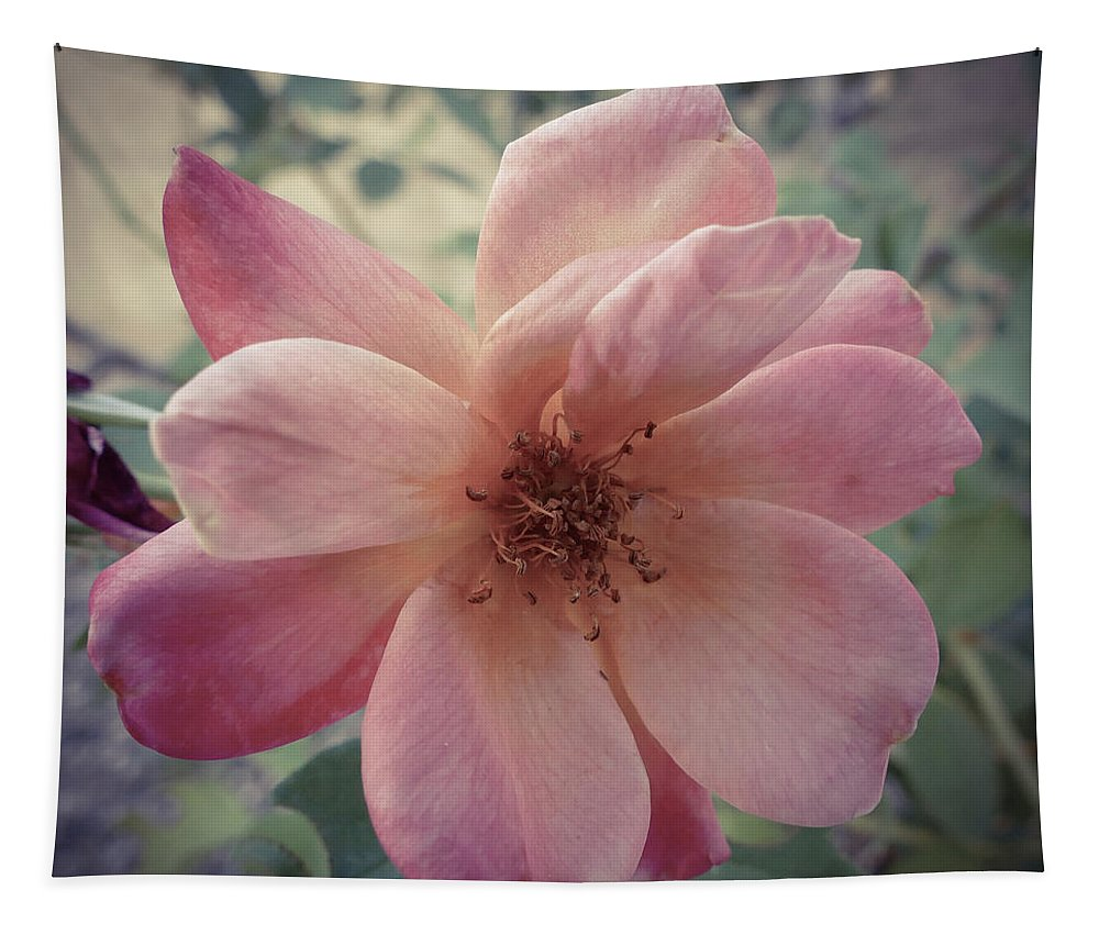Square Tapestry featuring the photograph Pink Petals by Laurel Powell