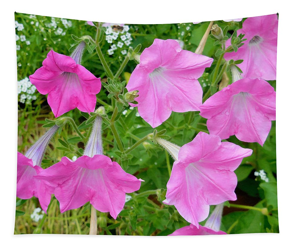 Pink Petunia Flower Tapestry featuring the painting Pink Petunia Flower 9 by Jeelan Clark