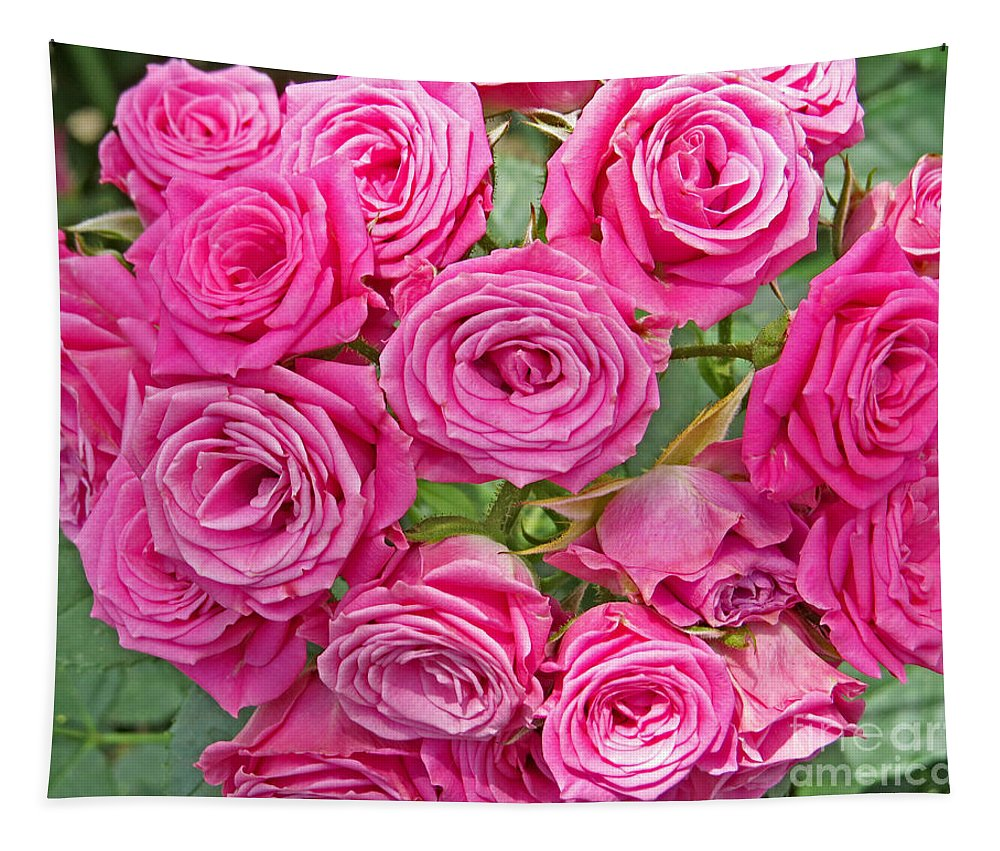 Flower Tapestry featuring the photograph Pink Rose Bouquet by Dawn Gari