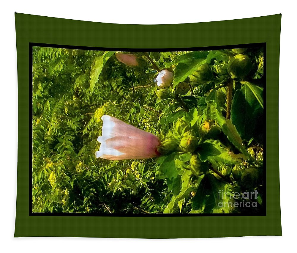 Pink Tapestry featuring the photograph Pink Rose Of Sharon Against Trees by Debra Lynch