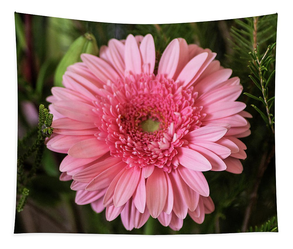 Flower Tapestry featuring the photograph Pink Stunner by Tania Read