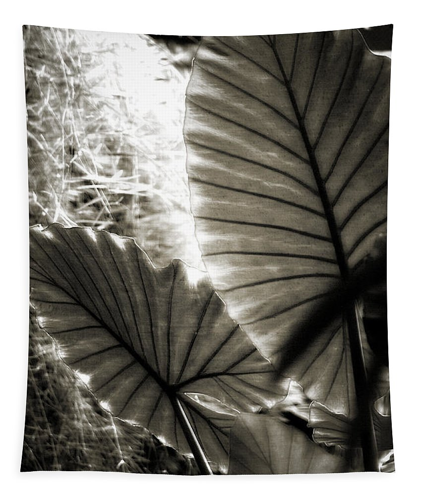 Lillies Tapestry featuring the photograph Plant 8661 by Timothy Bischoff