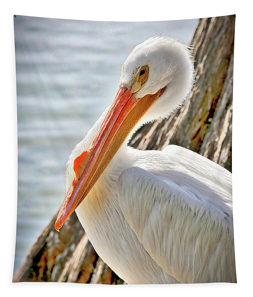 American White Pelican Tapestry featuring the photograph Pleasant Pelican by Carol Groenen