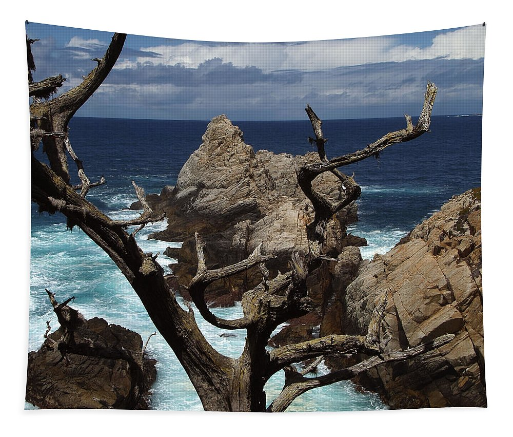 Carmel Tapestry featuring the photograph Point Lobos Rocks and Branches by Charlene Mitchell