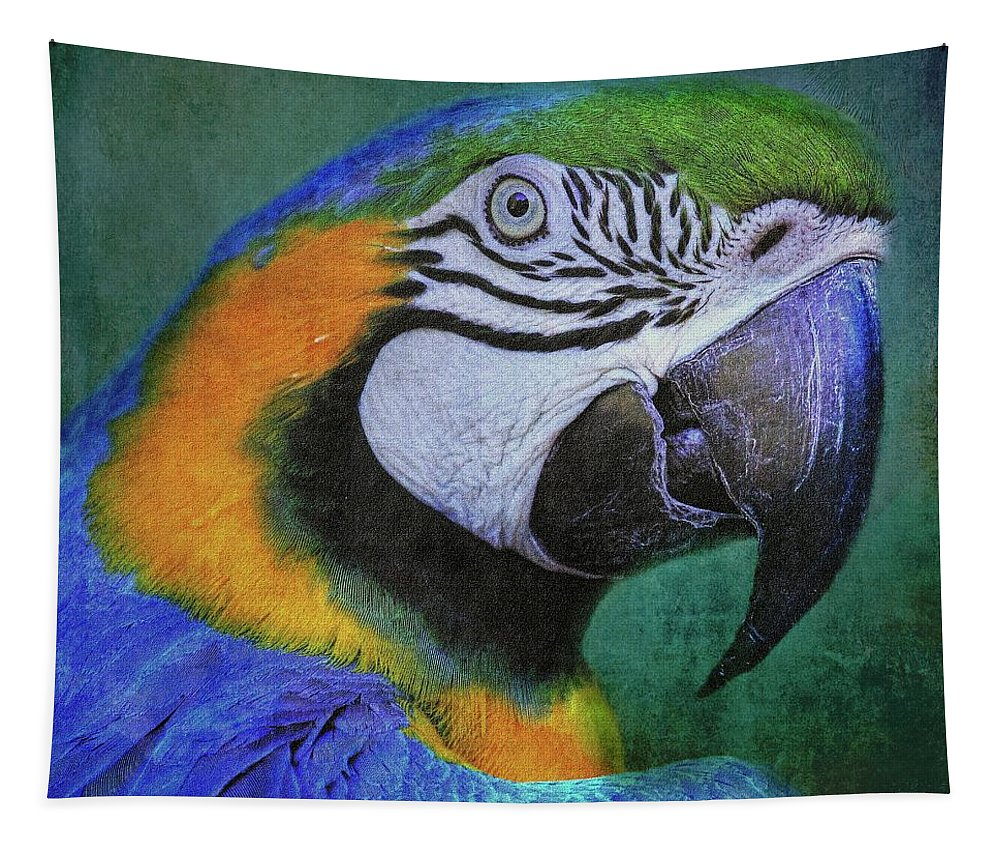 Macaw Tapestry featuring the photograph Polly Who by HH Photography of Florida
