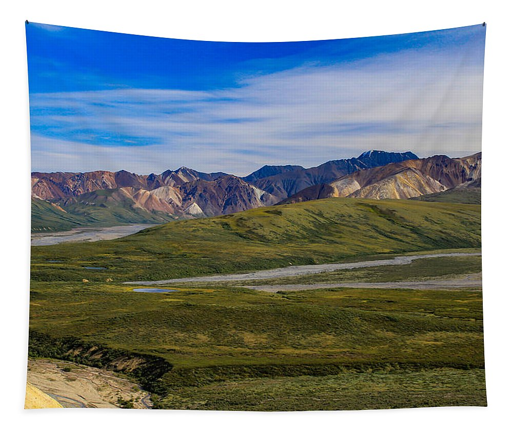 Alaska Tapestry featuring the photograph Polychrome Pass Area Denali National Park Four by Mo Barton
