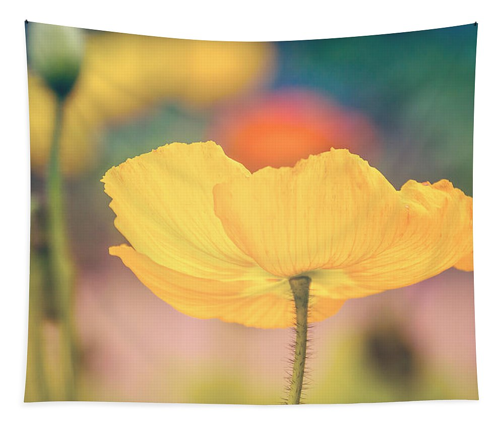 Photography Tapestry featuring the digital art Poppy 1 by Terry Davis