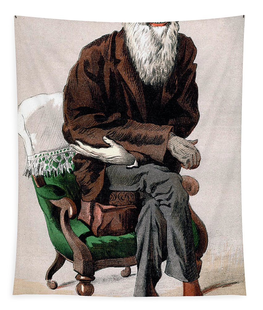 Charles Darwin Tapestry featuring the painting Portrait Of Charles Darwin by James Jacques Joseph Tissot