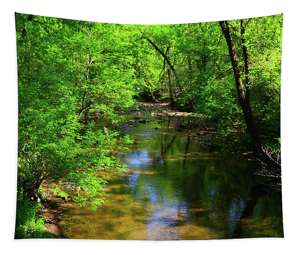 Potamac River In Maryland Tapestry featuring the photograph Potamac River In Maryland by Raymond Salani III