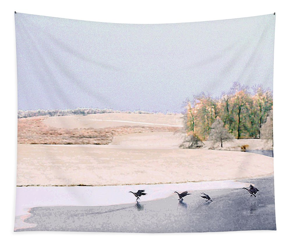 Landscape Tapestry featuring the photograph Powell Gardens In Winter by Steve Karol