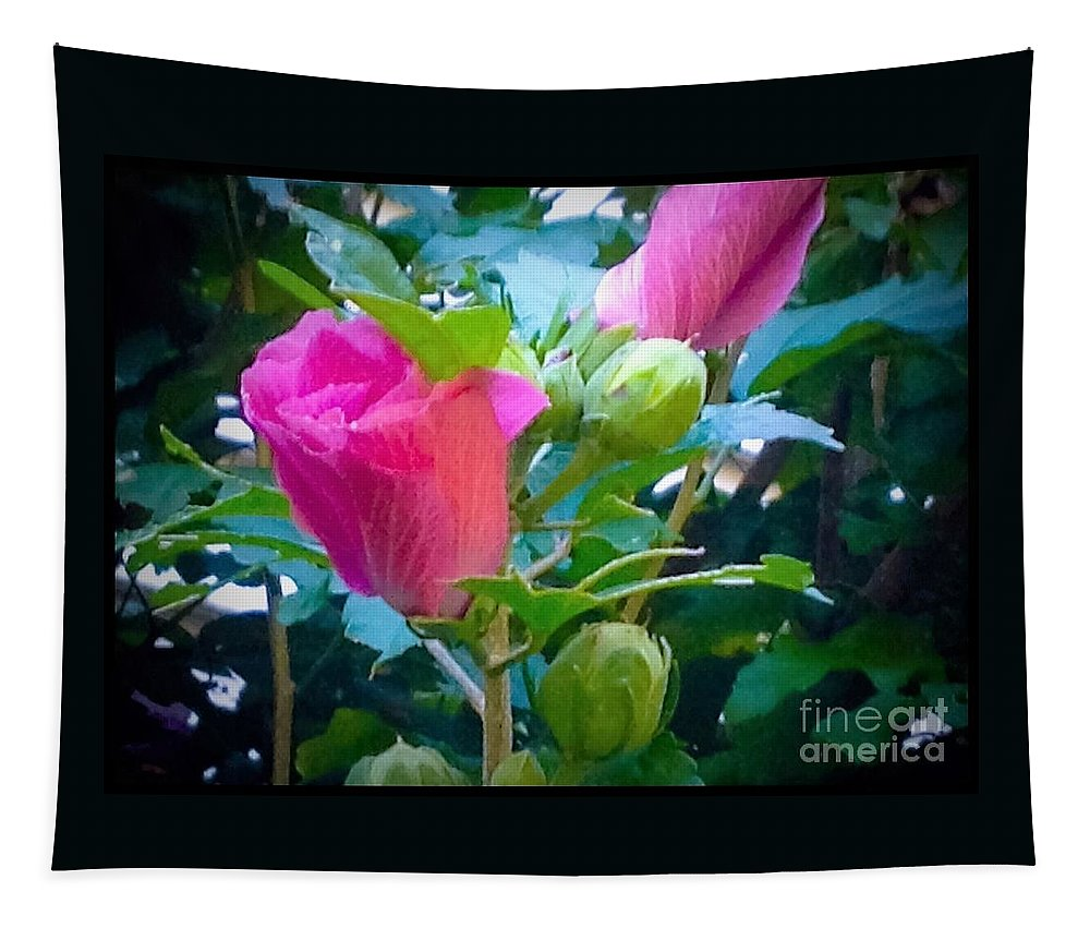 Hibiscus Tapestry featuring the photograph Pretty In Pink Hibiscus Flowers And Buds by Debra Lynch