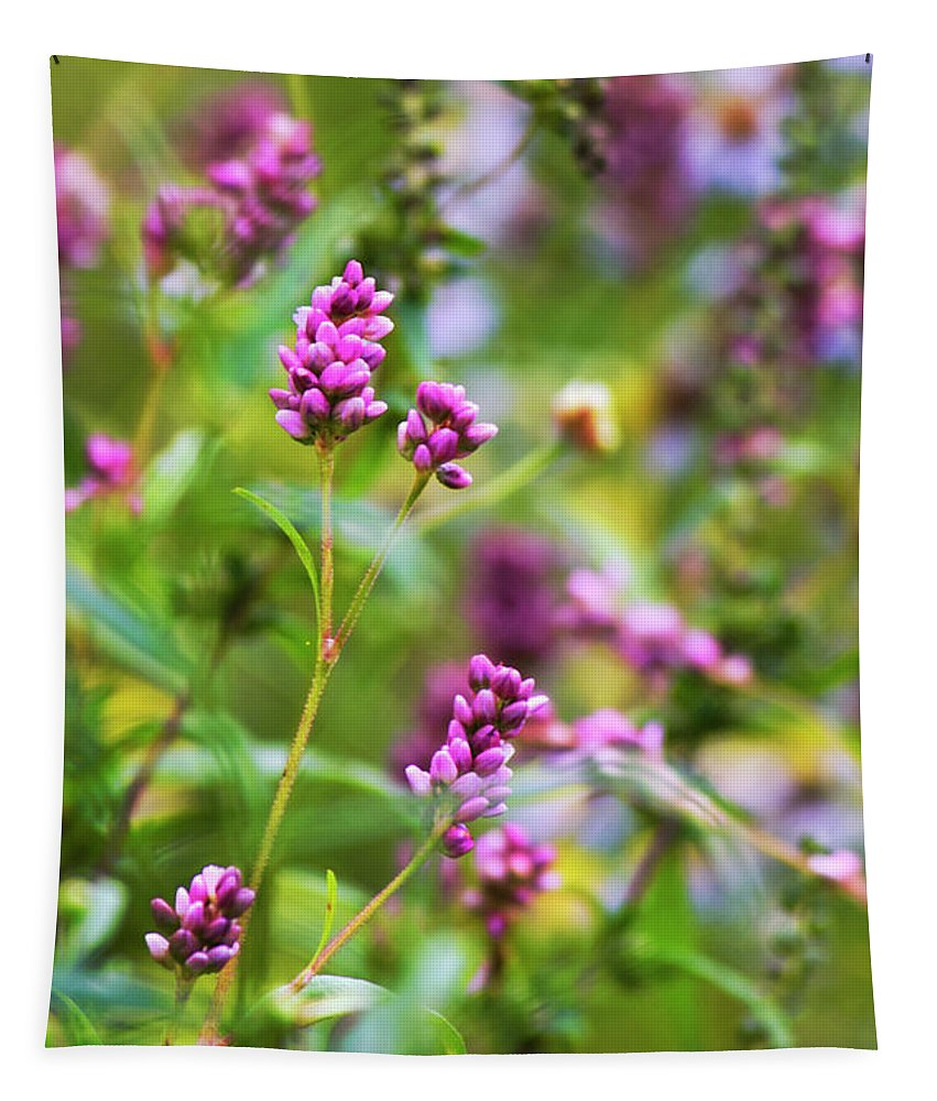 Flowers Tapestry featuring the photograph Pretty Pink Smartweed Flowers by Christina Rollo