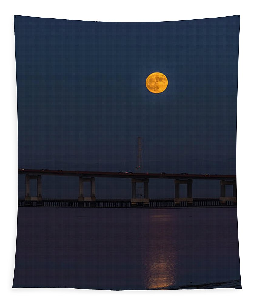 Moon Tapestry featuring the photograph Prince Of Tides by Alex Lapidus