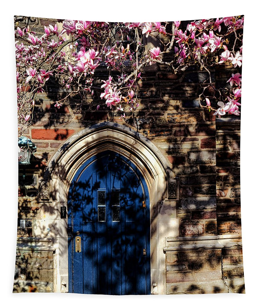 Princeton Tapestry featuring the photograph Princeton University Door And Magnolia by Olivier Le Queinec