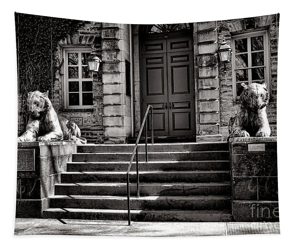 Princeton Tapestry featuring the photograph Princeton University Nassau Hall Tigers by Olivier Le Queinec