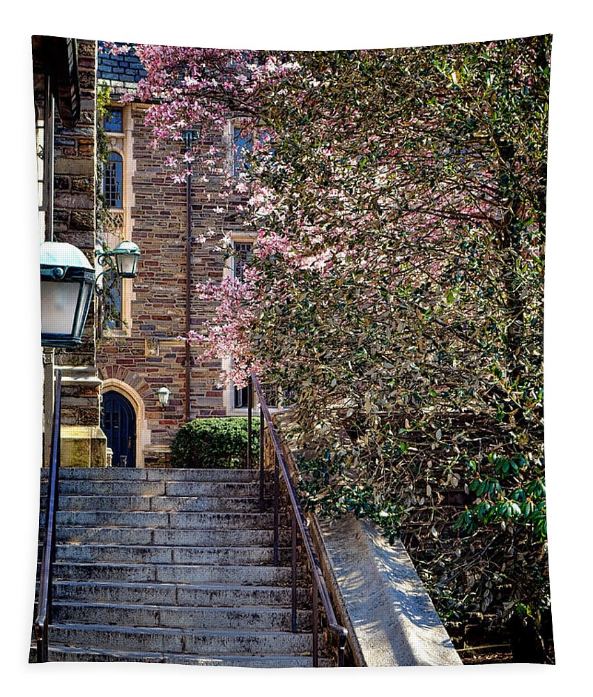 Princeton Tapestry featuring the photograph Princeton University Old Stairway by Olivier Le Queinec