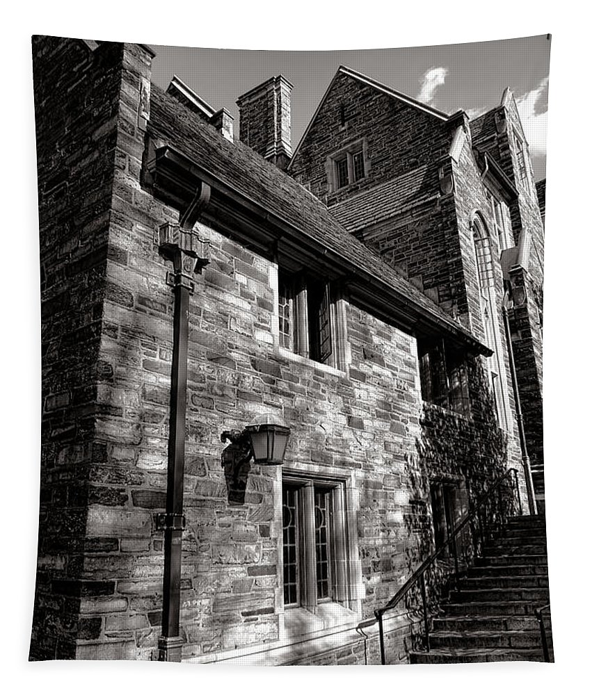 Princeton Tapestry featuring the photograph Princeton University Pyne Hall Stairs by Olivier Le Queinec