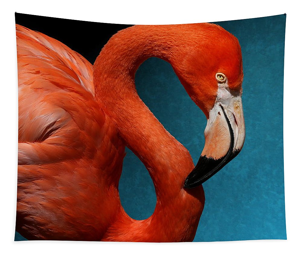 American Flamingo Tapestry featuring the photograph Profile Of An American Flamingo by Debi Dalio