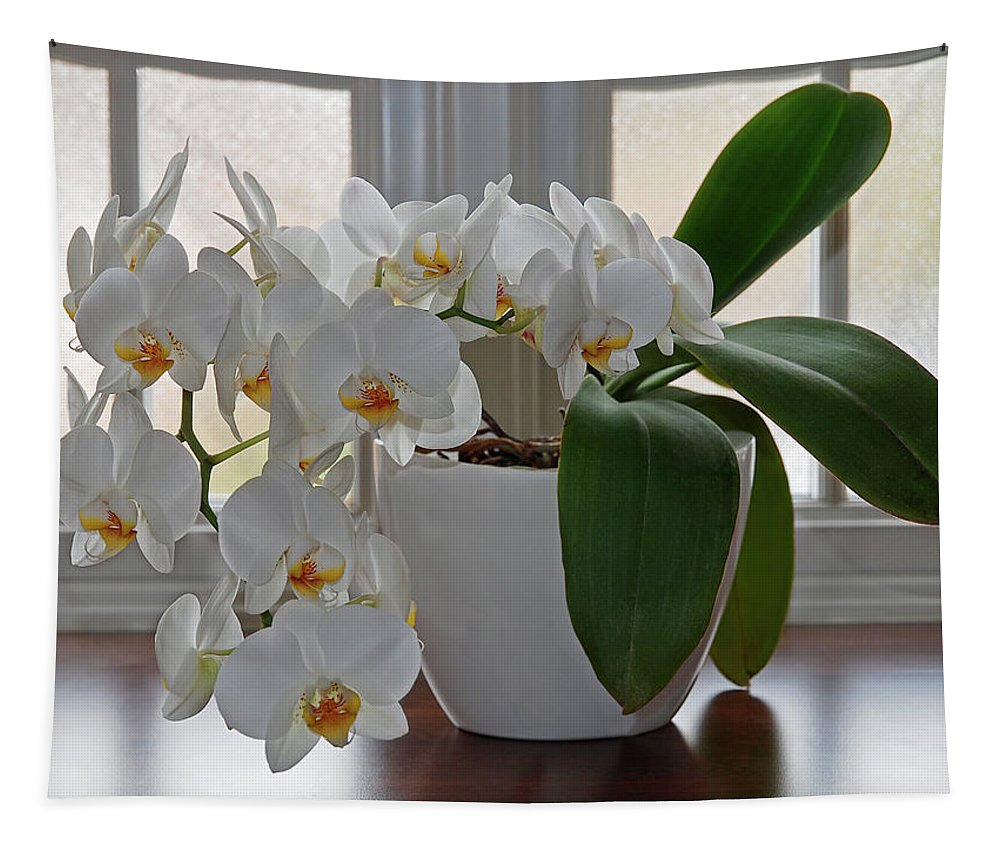 Pure White Orchid Tapestry featuring the photograph Profusion Of White Orchid Flowers by Gill Billington