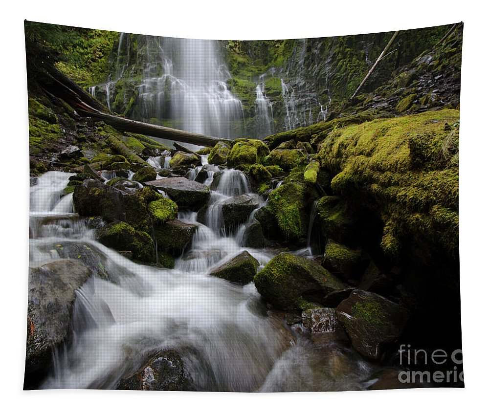 Proxy Tapestry featuring the photograph Proxy Falls Oregon 5 by Bob Christopher