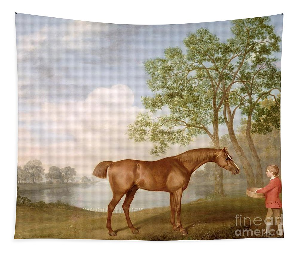 Pumpkin Tapestry featuring the painting Pumpkin With A Stable-lad by George Stubbs