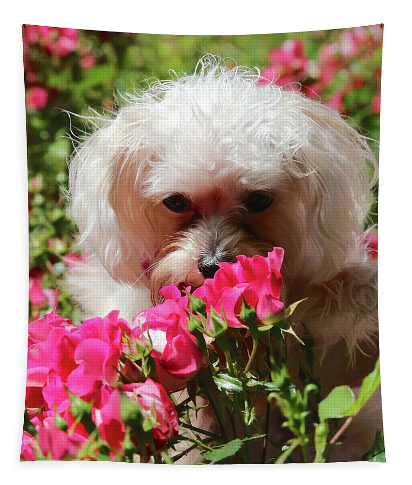 Puppy Tapestry featuring the photograph Puppy With Roses by Carol Groenen