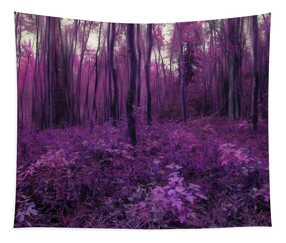Purple Tapestry featuring the photograph Purple Forest by Priska Wettstein