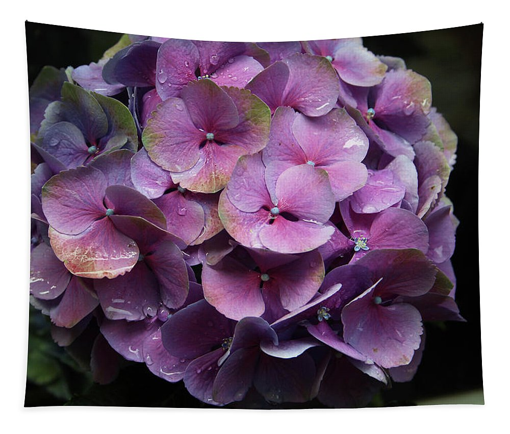 Flower Tapestry featuring the photograph Purple Hydrangea- By Linda Woods by Linda Woods