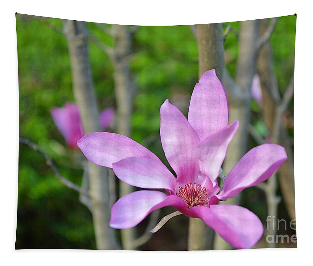 Savannah Tapestry featuring the photograph Purple Magnolia by Linda Covino