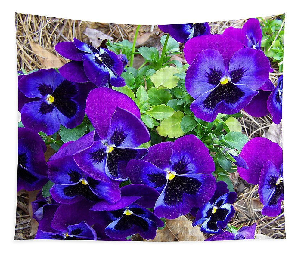 Pansies Tapestry featuring the photograph Purple Pansies by Sandi OReilly