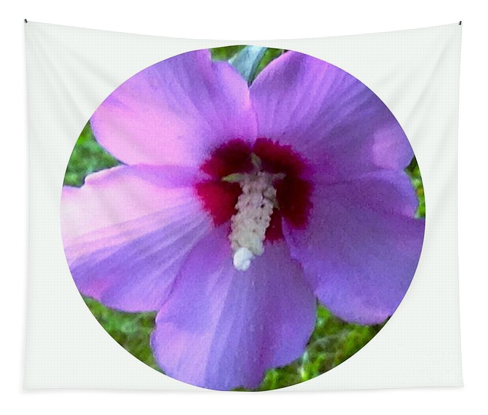 Flower Tapestry featuring the photograph Purple Rose Of Sharon In Circle Frame by Debra Lynch