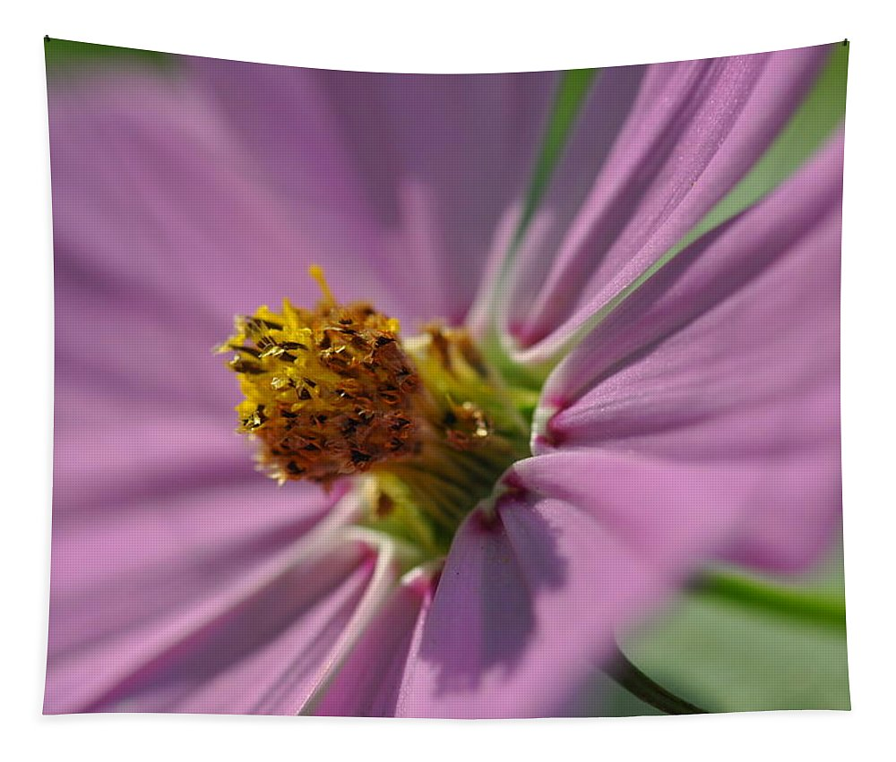 Flower Tapestry featuring the photograph Purple Soft Petals by Barbara Treaster
