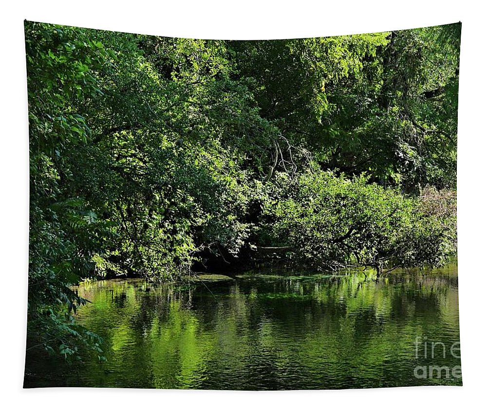 Quiet Tapestry featuring the photograph Quiet Moments by Gary Richards