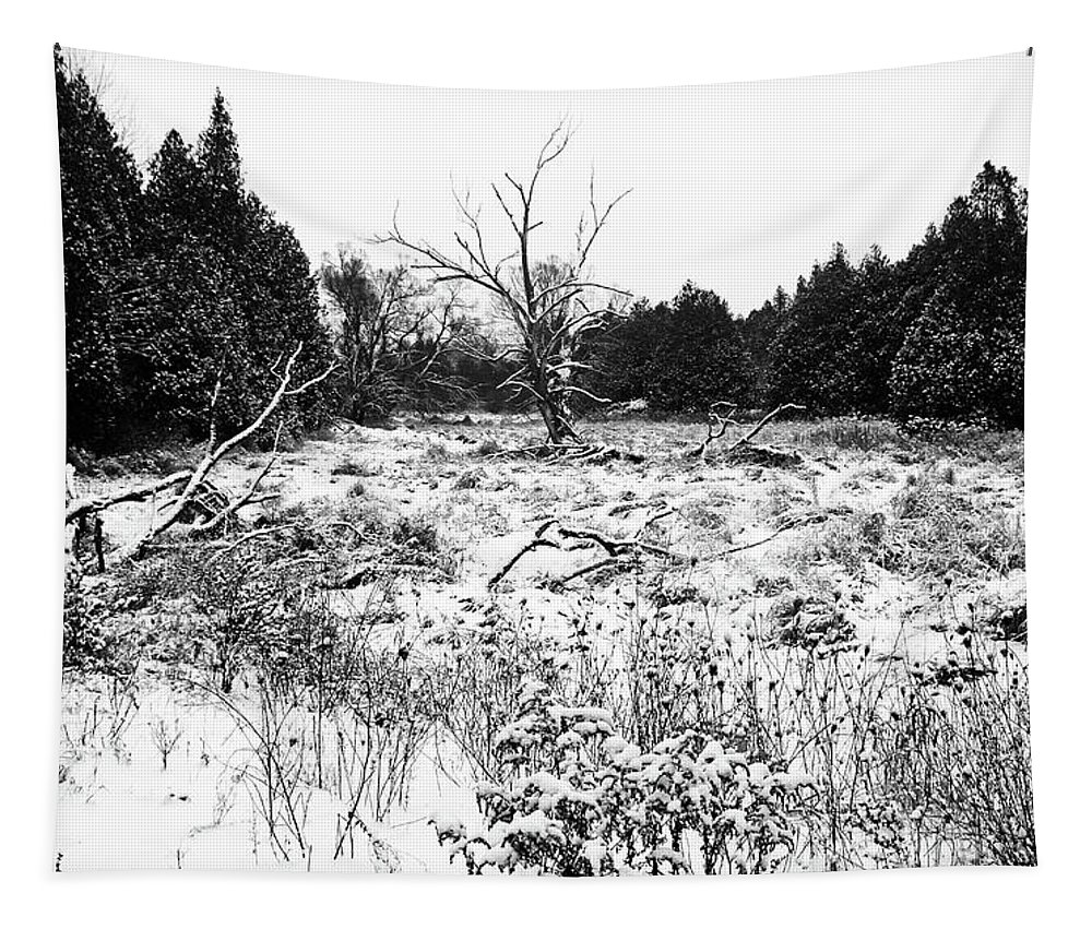 Winter Tapestry featuring the photograph Quiet Winter Black And White by Debbie Oppermann