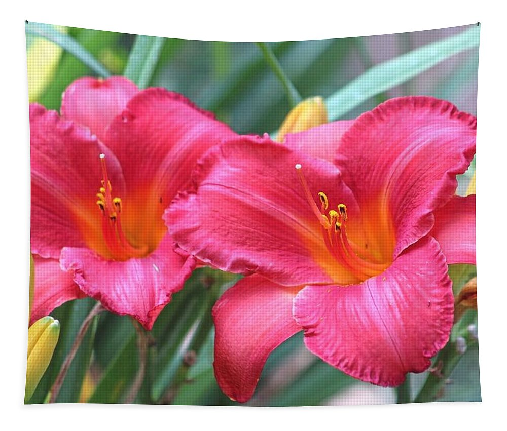 Day Lily Tapestry featuring the photograph Radient Reds by Gayle Miller