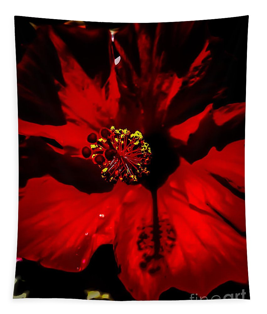 Red Tapestry featuring the photograph Raging Red Hibiscus by Heather Joyce Morrill