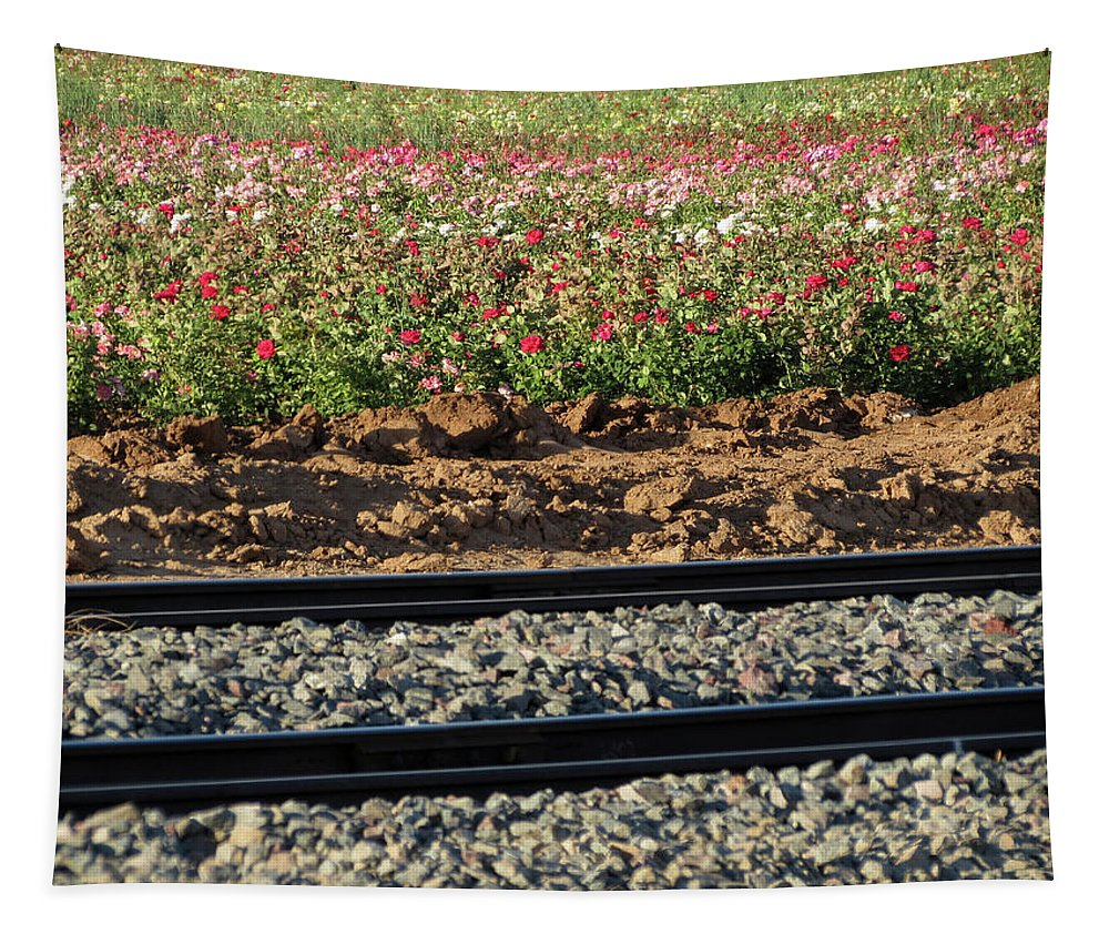 Farm Tapestry featuring the photograph Rails And Roses by Laurel Powell