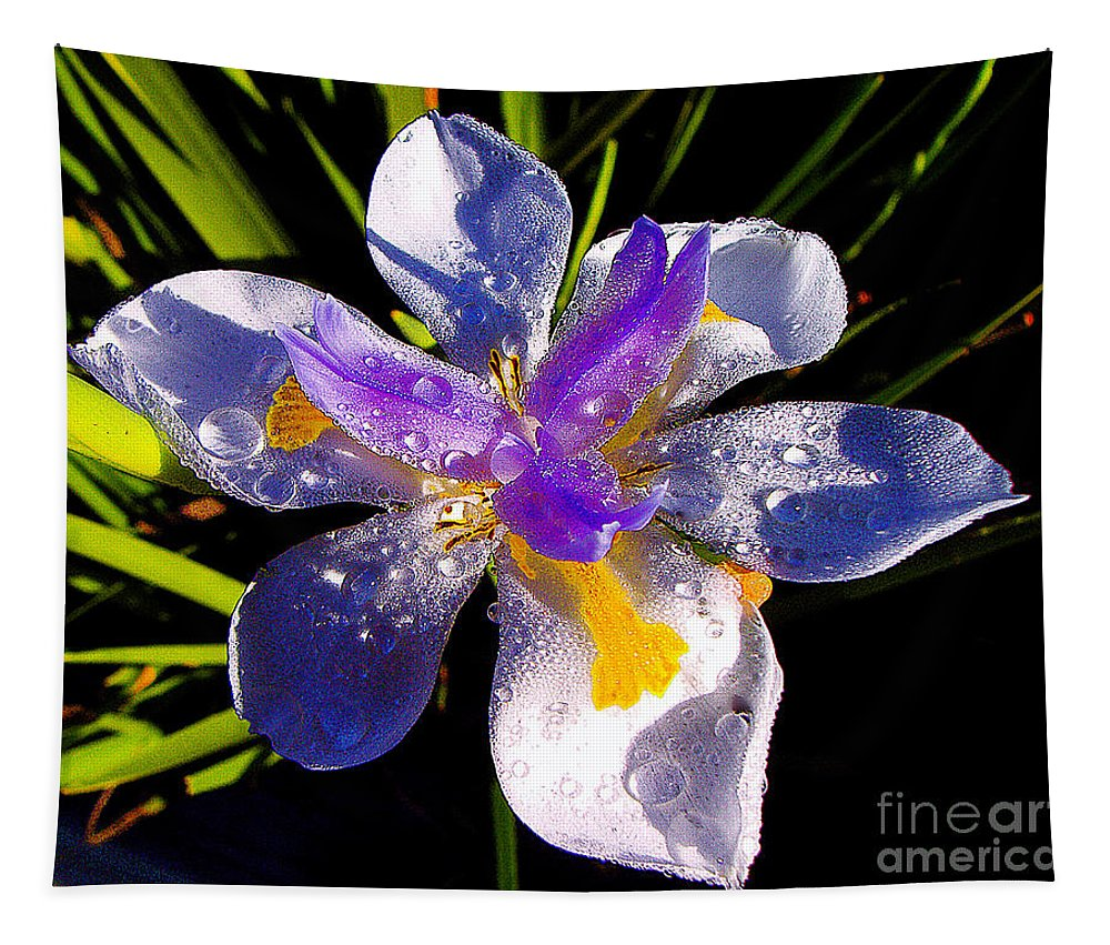 Flower Tapestry featuring the photograph Rain Flower Morning by Jerome Stumphauzer