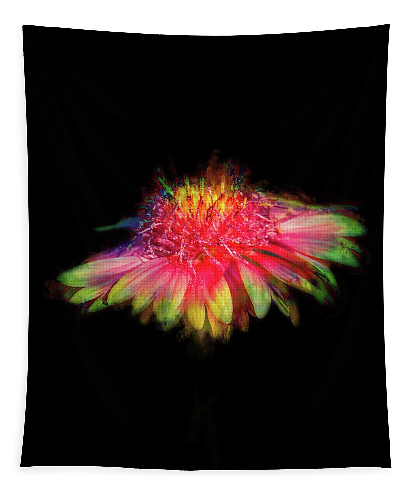 Rainbow Colors Tapestry featuring the digital art Rainbow Flower On Black by Terry Davis