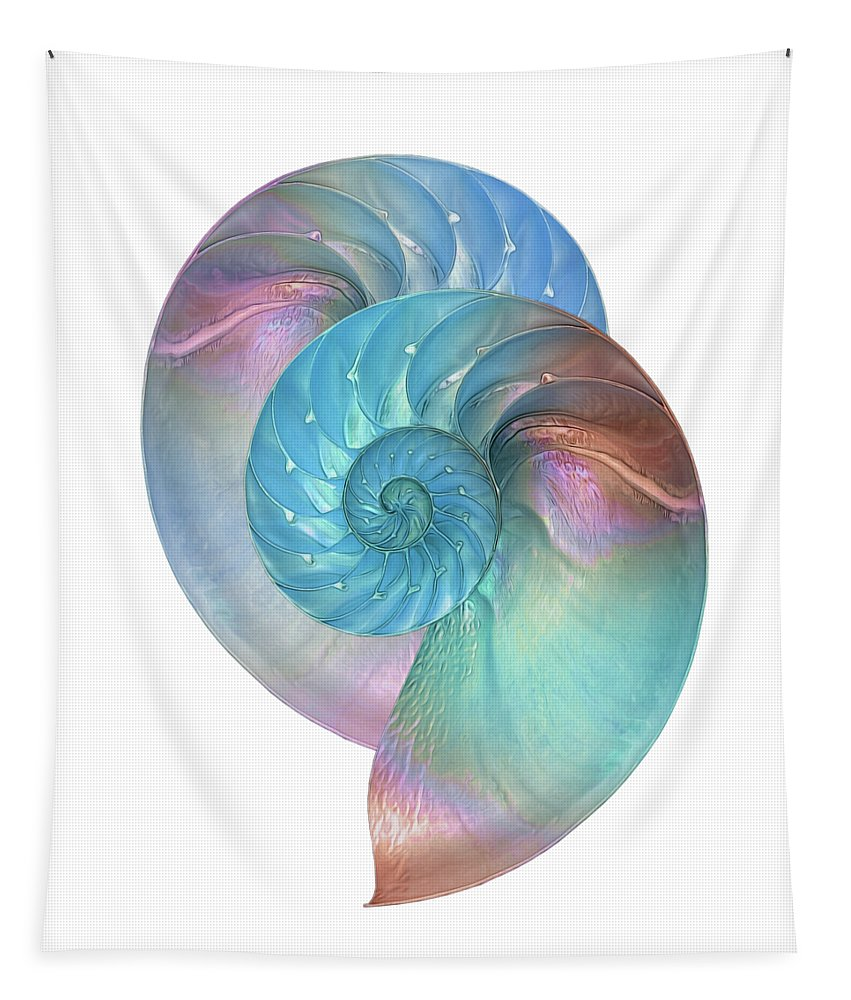 Nautilus Shell Tapestry featuring the photograph Rainbow Nautilus Pair On White by Gill Billington