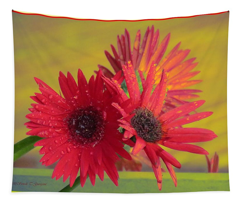 Gerbera Tapestry featuring the photograph Raindrops On Gerbera by Sonali Gangane