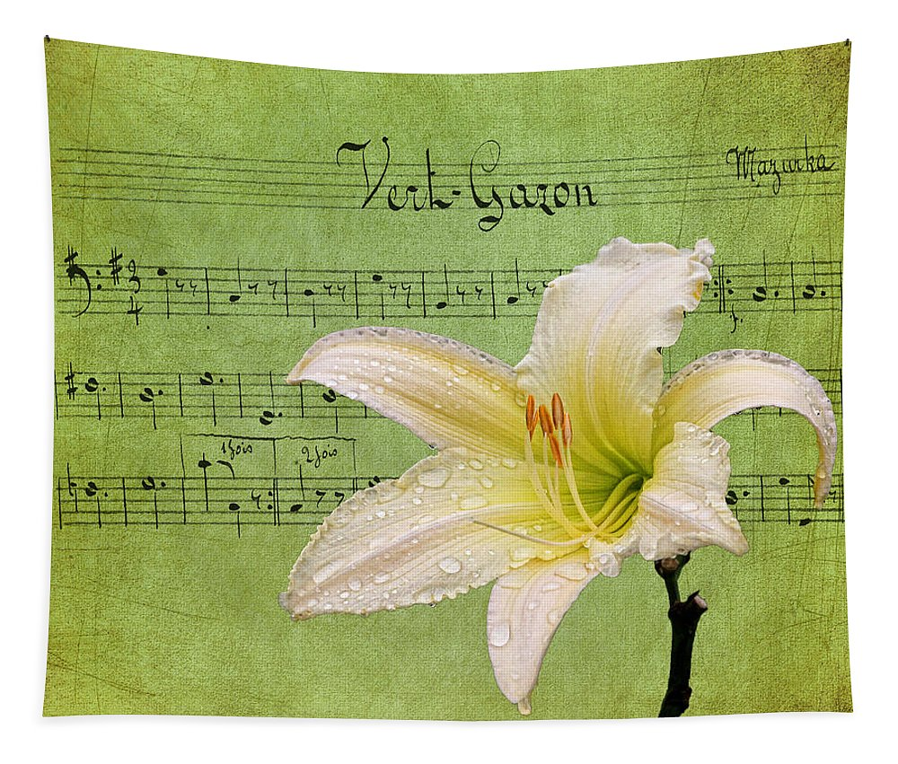 Daylily Tapestry featuring the photograph Raindrops On Lily by Judy Vincent