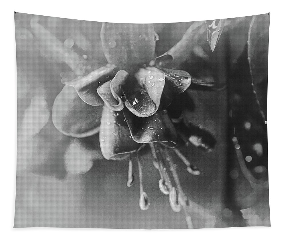 Fuchsia Tapestry featuring the photograph Rainy Day In June by Susan Capuano