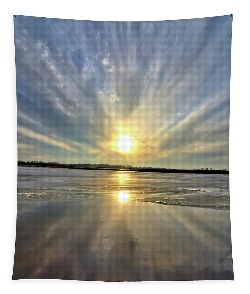 Marsh Tapestry featuring the photograph Rayed Marsh 2 by Bonfire Photography