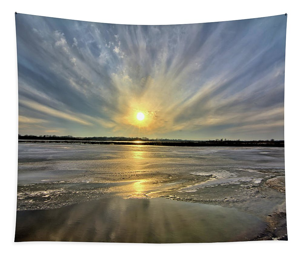 Marsh Tapestry featuring the photograph Rayed Marsh by Bonfire Photography