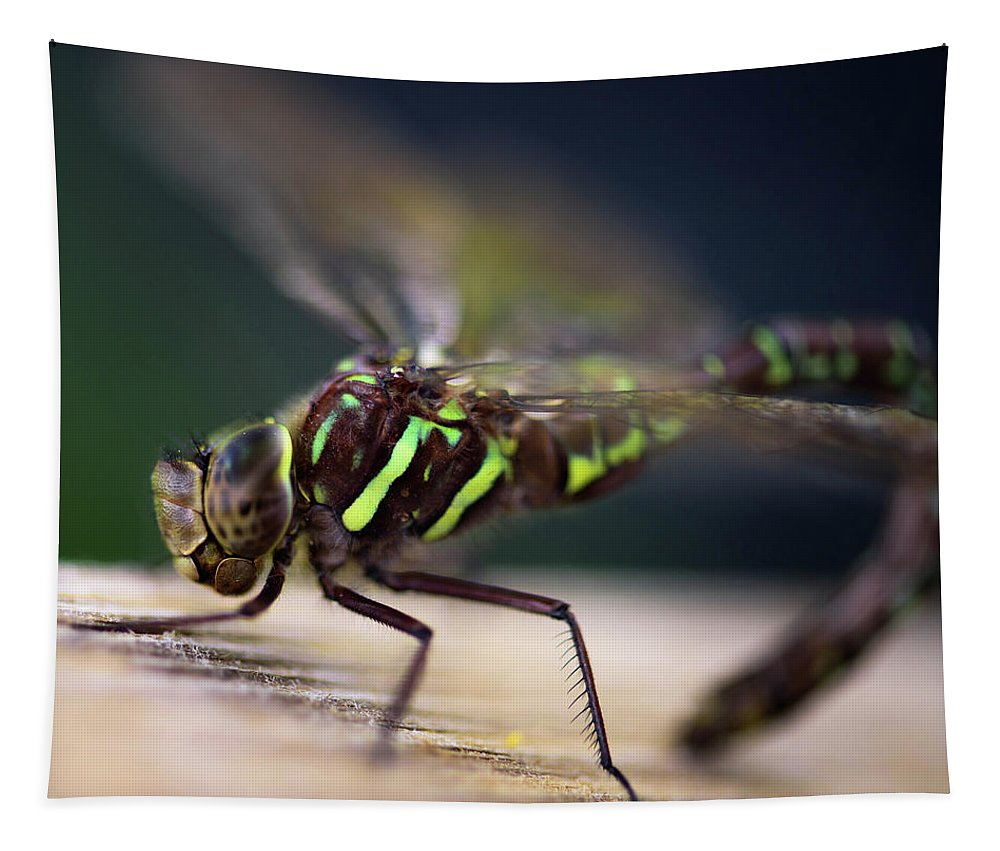 Dragonfly Tapestry featuring the photograph Ready For Takeoff by Sherman Perry